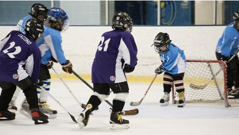 Top Guides Regarding Ice Hockey for Enthusiastic Players